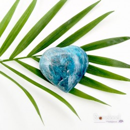 Cœur - Apatite bleue
